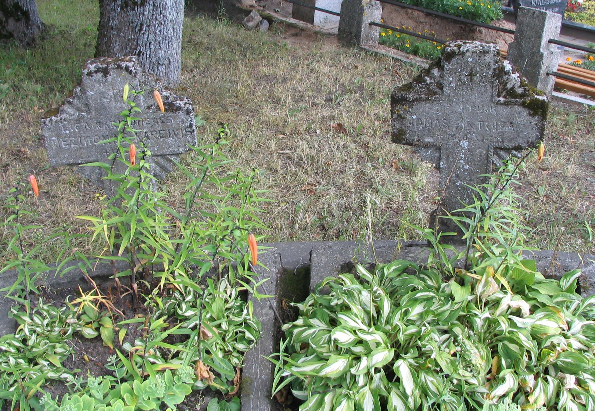 Savanorių kapinės Želvoje